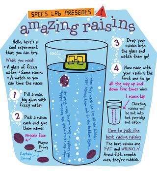 Kids raisins