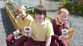 St Peter & Pauls Primary School